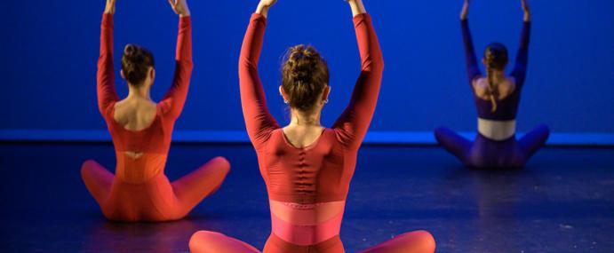 Conférence dansée lors de la Semaine de la Danse 2020 aux EMA de Vitry sur Seine