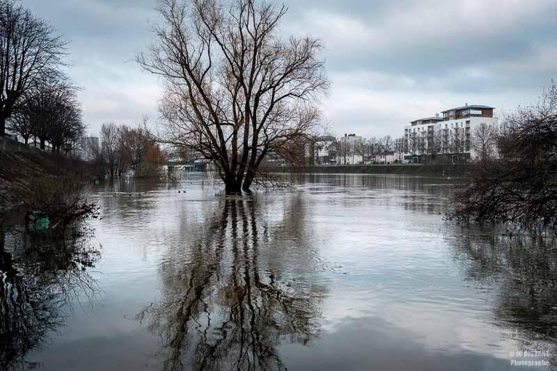 03/52 - Crue de la Seine à Vitry sur Seine en Janvier 2018