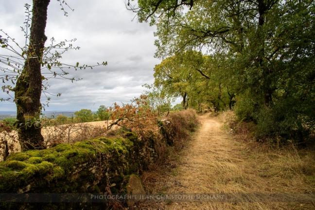 Sur les hauteurs d'Alvignac- Lot
