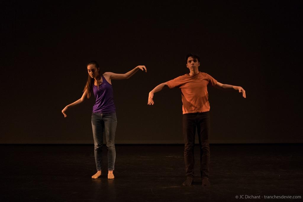 Auteurs en herbes - Semaine de la Danse 2017 - EMA Vitry sur Seine